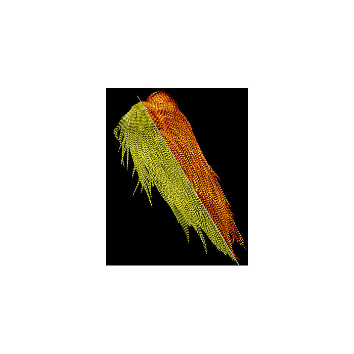 Keough Hackle Grizzly Sadlle - 1/2