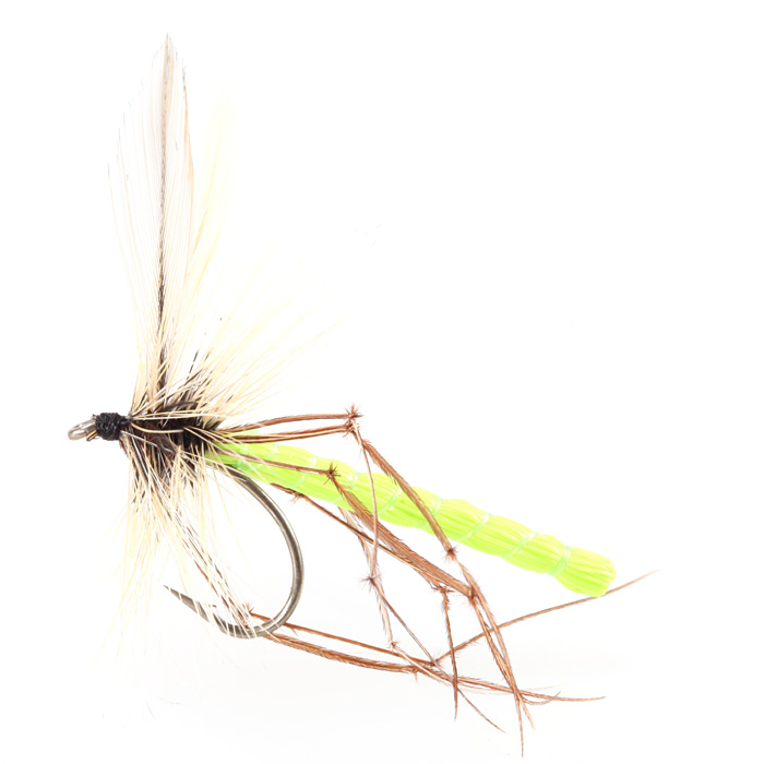 Dads Daddy long Legs Chartreuse