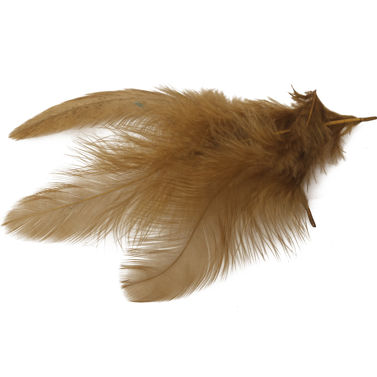 Wapsi white matuka soft hackle fly tying feathers taimen for Fly fishing feathers