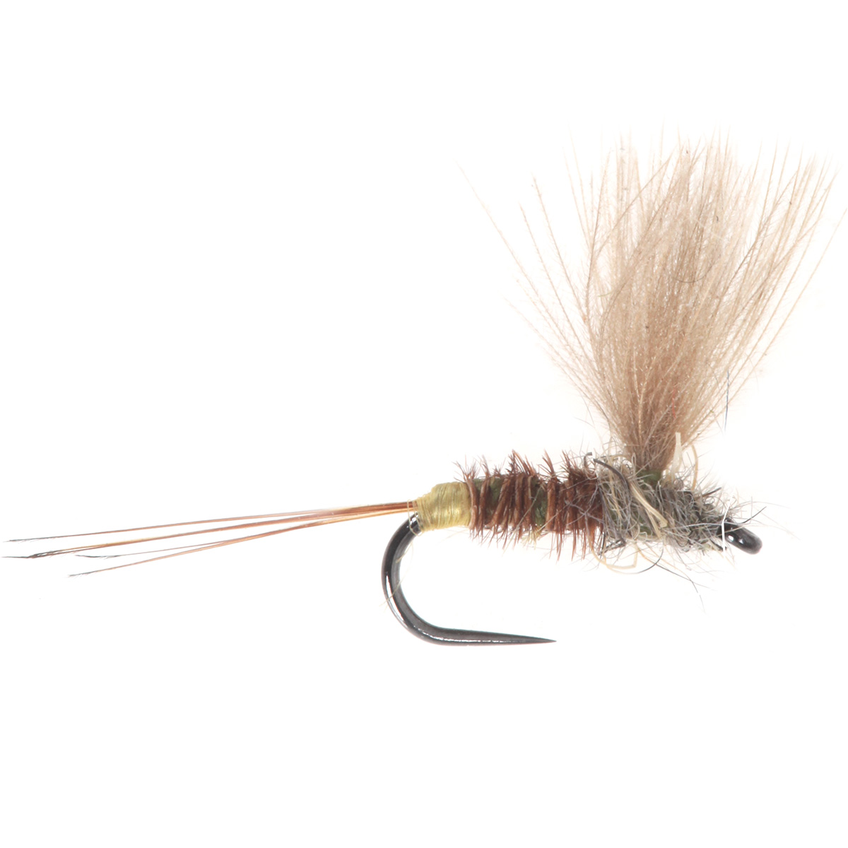 No Hackle Pheasant tail