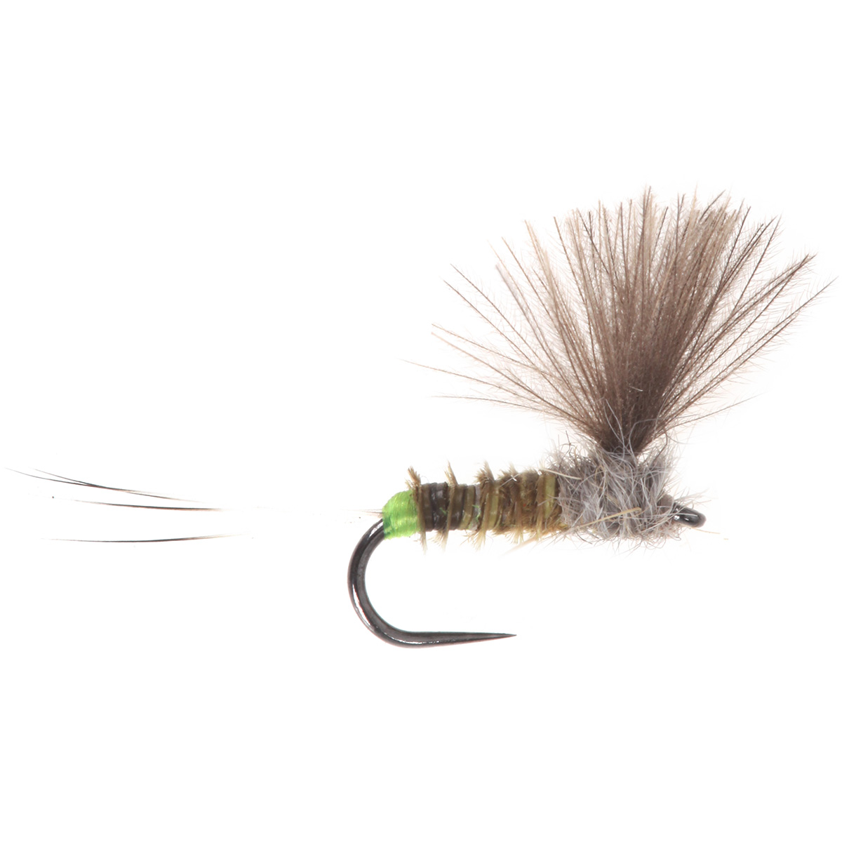 No Hackle Olive Quill