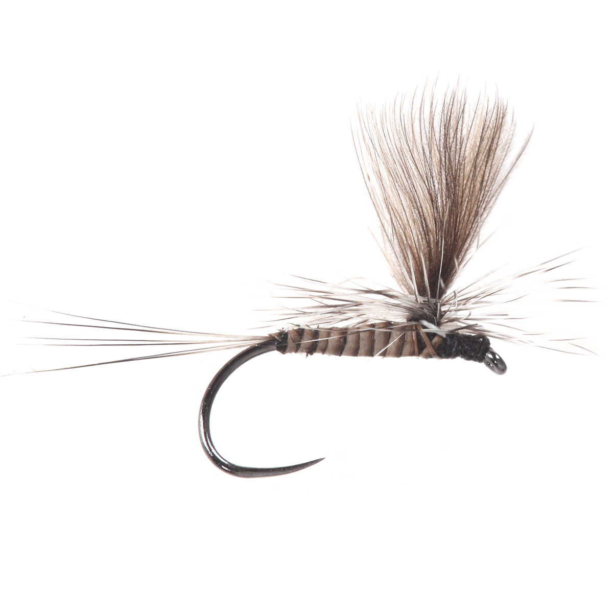 Parachute Quill Body CDC Natural