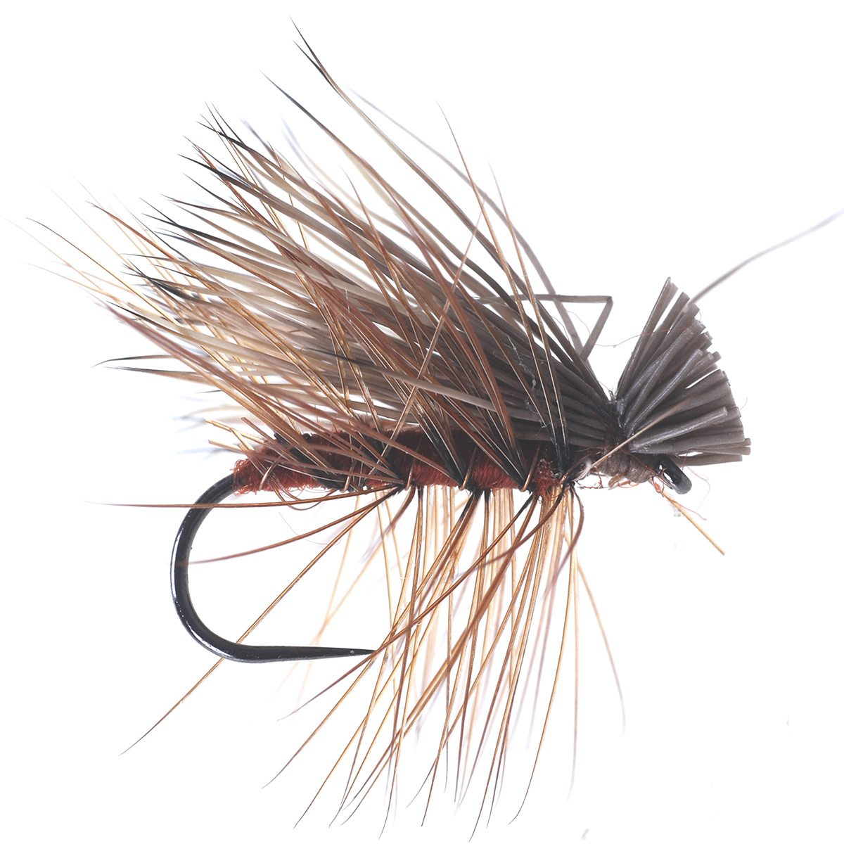 Elk Sedge Brown