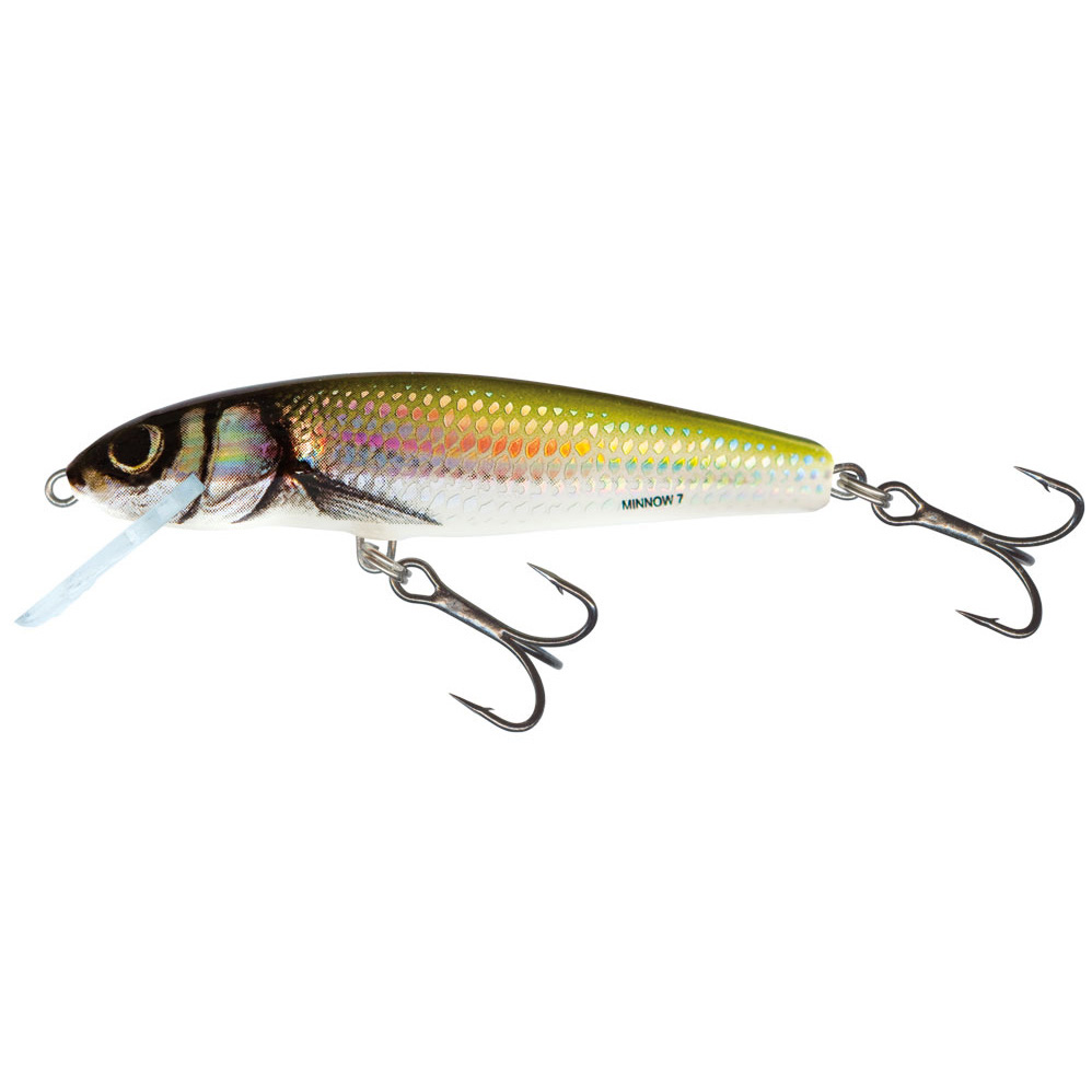 Salmo minnow fishing lures minnows ebay for Ebay fishing lures