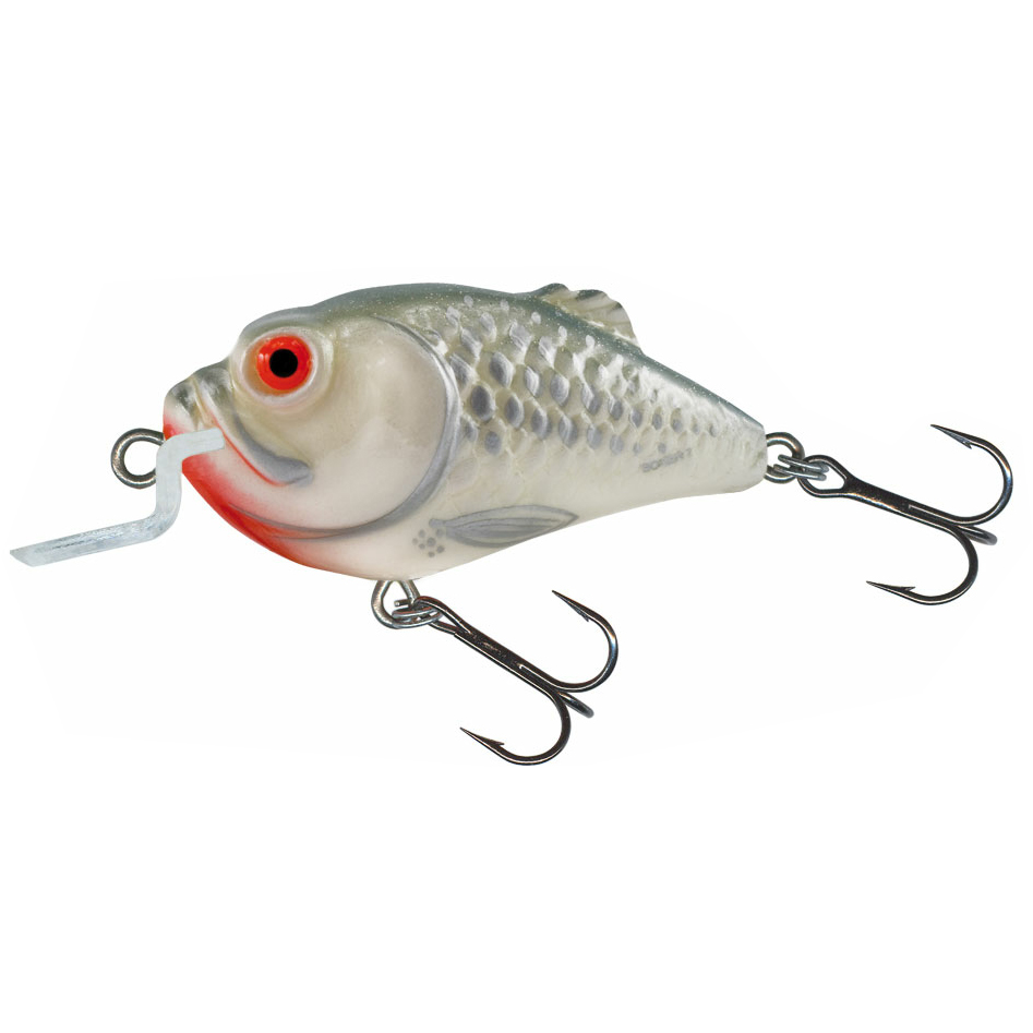Salmo boxer fishing lures crankbaits ebay for Ebay fishing lures